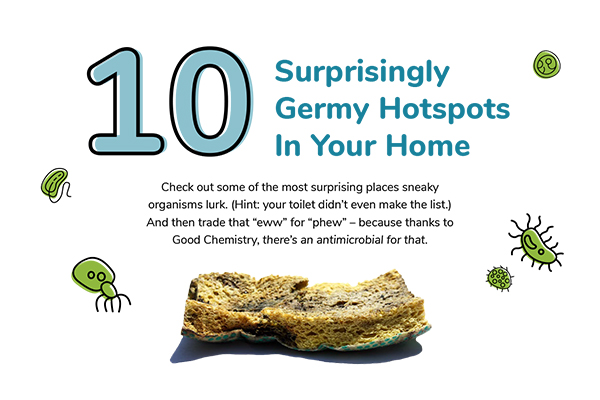 10 Surprisingly Germy Hotspots In Your Home